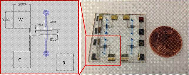 electrochemical chip
